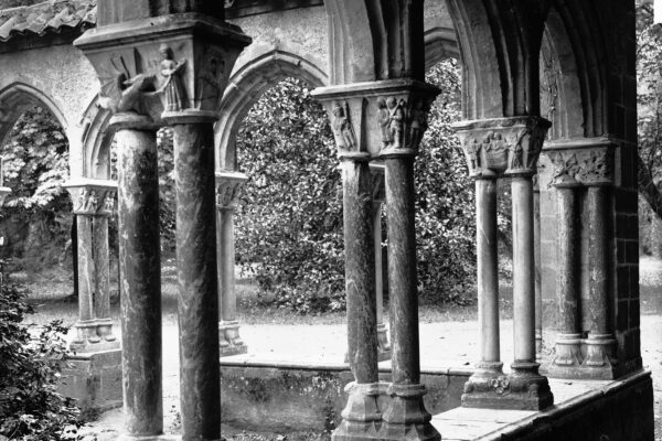 Cloître du Jardin Massey – Tarbes